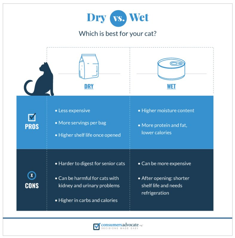 Wet food vs. dry food debate
